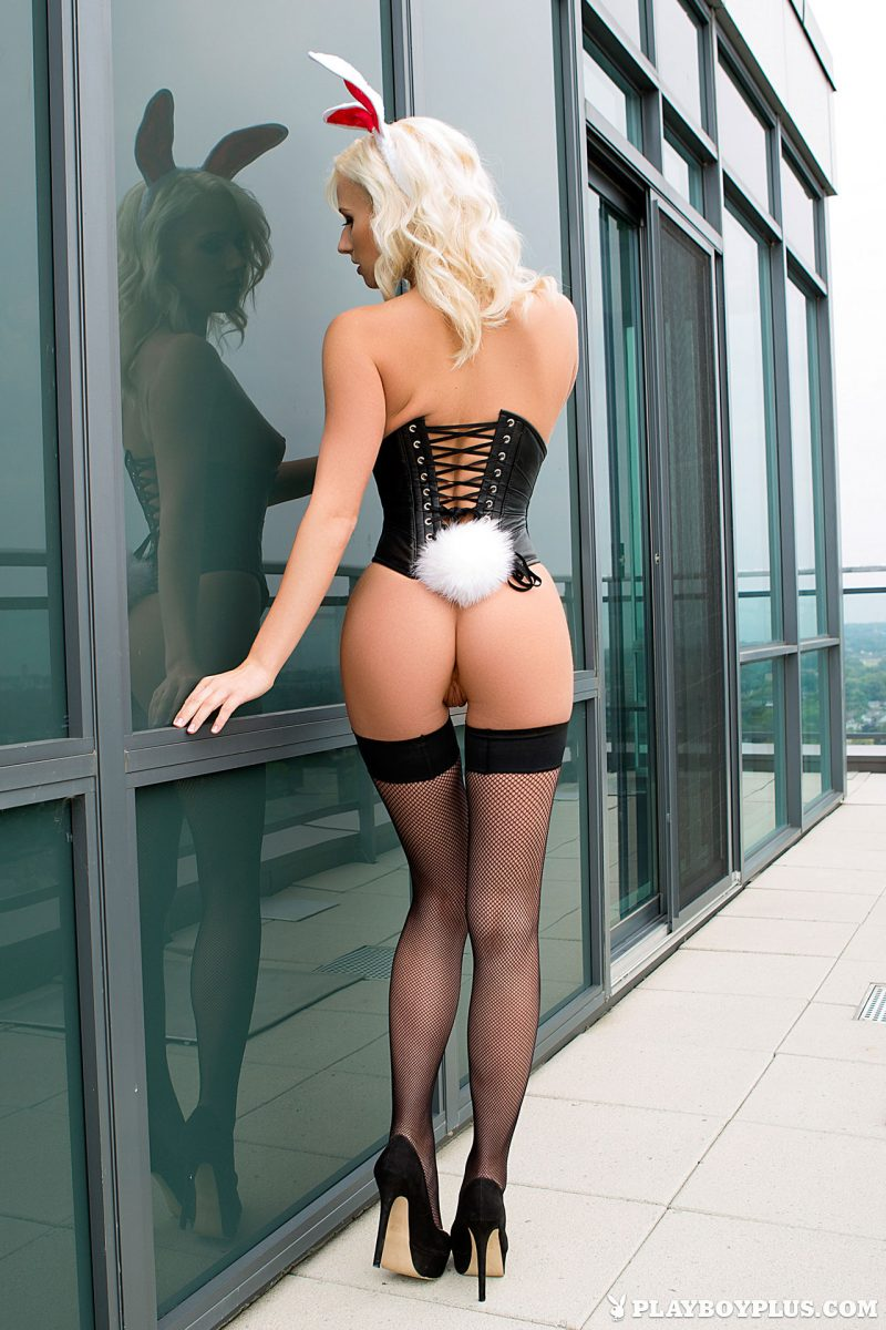 Shannon Cole – Blonde Bunny blonde bunny corset playboy shannon cole stockings Super Chicks