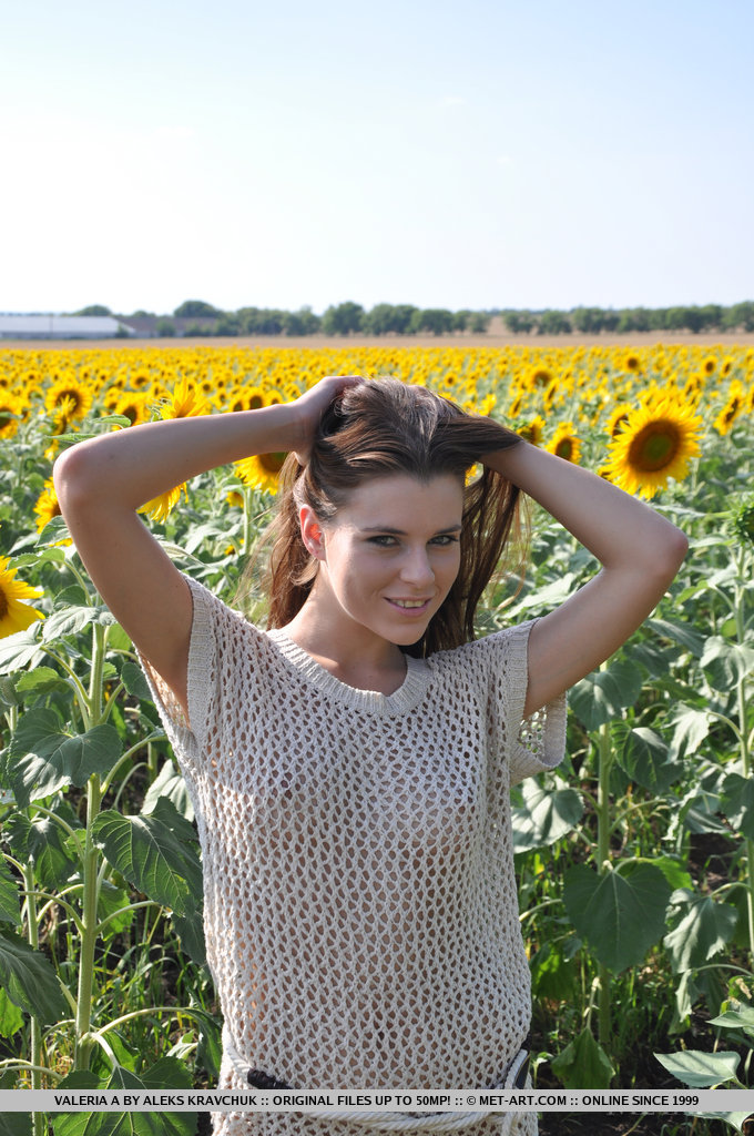 Valeria – Sunflower field aleksa slusarchi long hair Pretty Ladies sunflowers Valeria