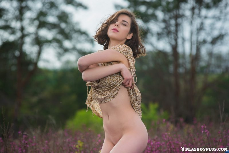 Dakota – Bed in the middle of nowhere dakota playboy Super Chicks